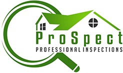 Professional Inspections Logo